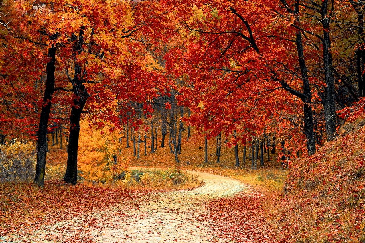 Où partir en octobre au soleil pour avoir chaud ?