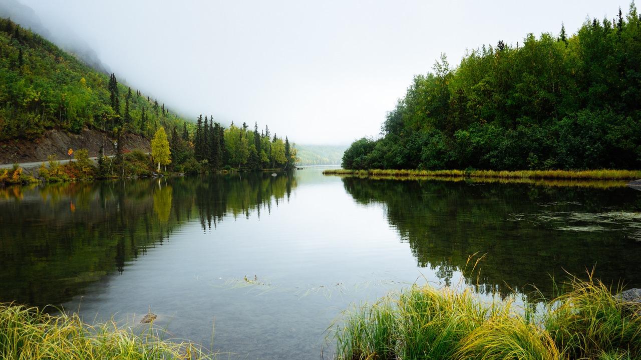 L'écotourisme : Quand l'écologie et le voyage se rencontrent !