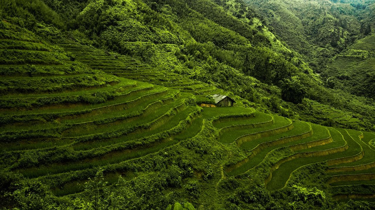 Partir à la découverte du Vietnam en été !